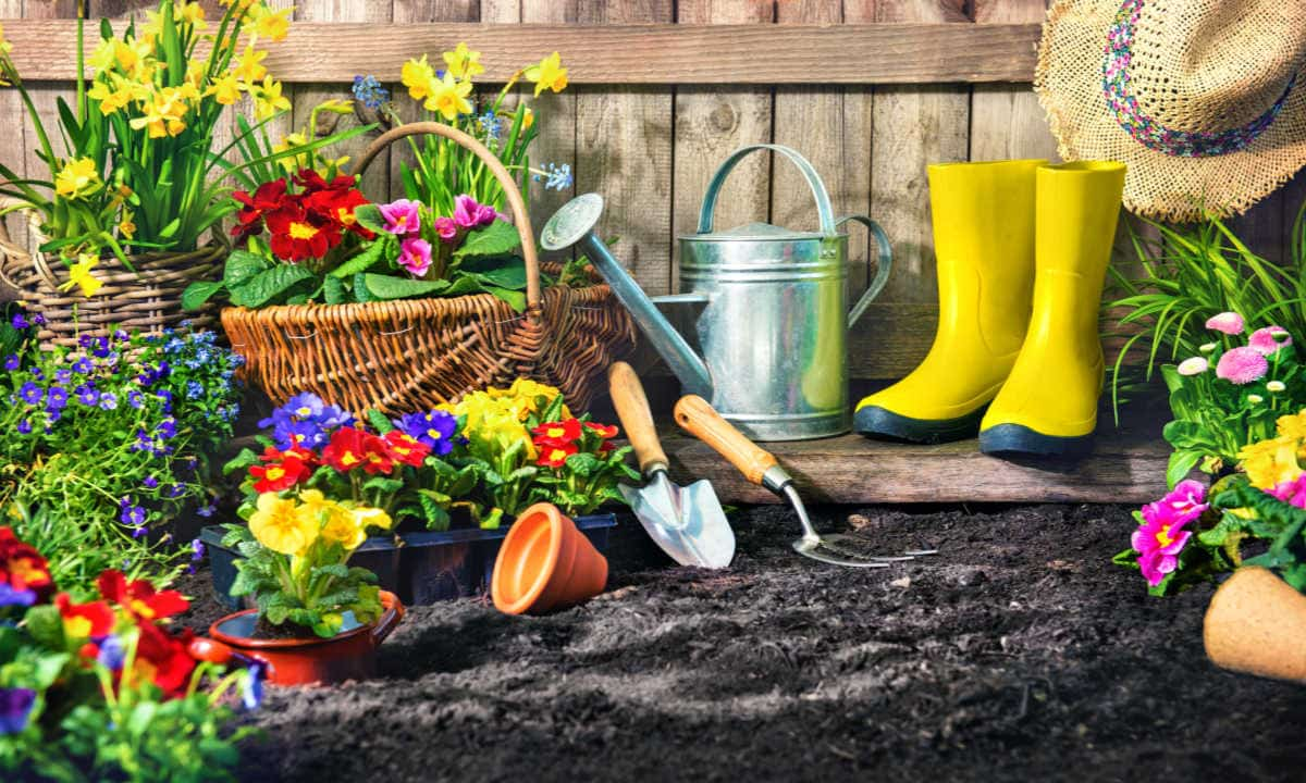 Gardening is Good for Your Health